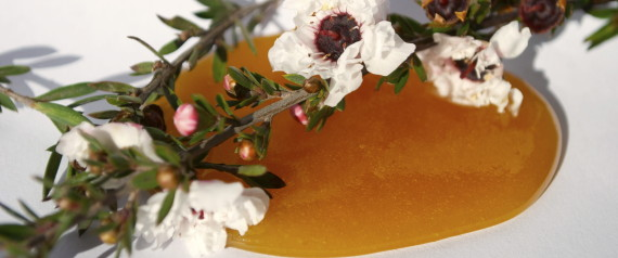 Photo of Knowing The Benefits Of Manuka Honey?