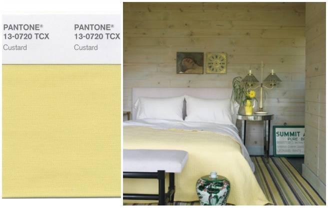 Custard Pantone