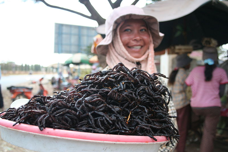 Photo of Weirdest Foods From Around the World