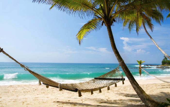 Photo of Key West: A Historical Island Paradise