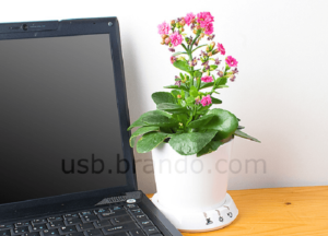 usb-flower-pot-min