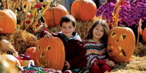 How To Have Good, Safe, Clean Halloween Fun for the Whole Family