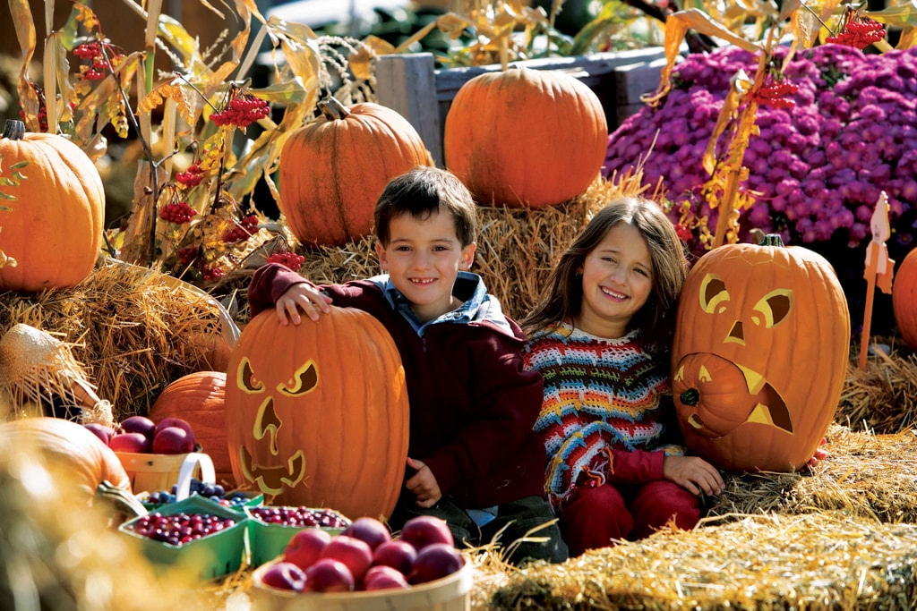 Photo of How To Have Good, Safe, Clean Halloween Fun for the Whole Family